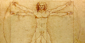 Da Vinci proportionschema of a human being